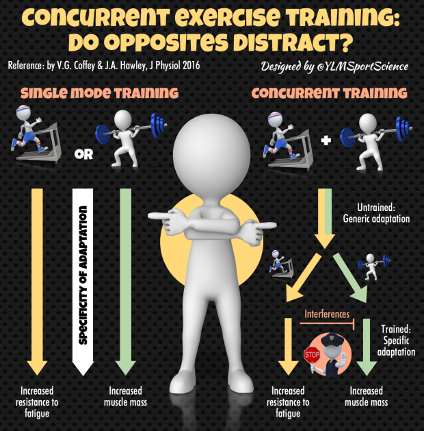 concurrent-training-bis