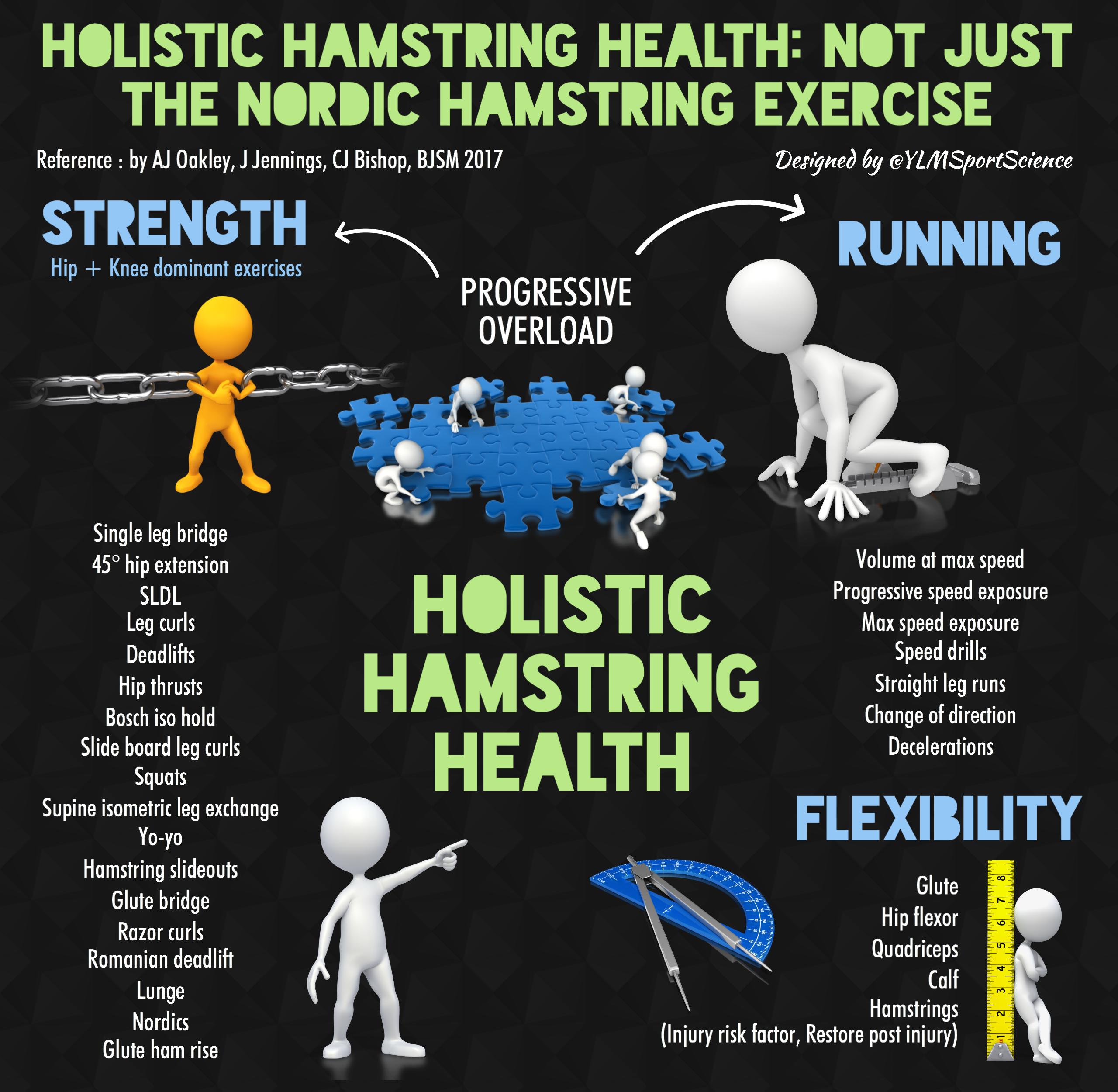 Hamstring Health BJSM.png