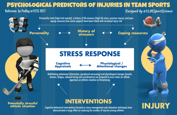 Stress-Injury Model ECSS.png