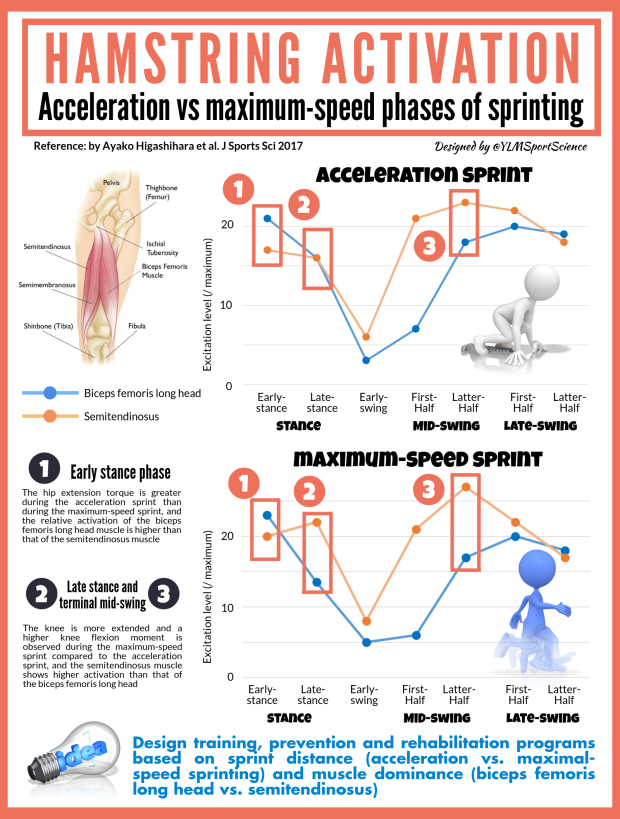 Hamstring Activation Accel vs Sprint.png