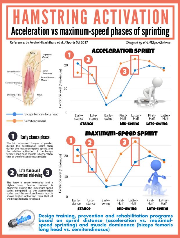 Hamstring Activation Accel vs Sprint.png