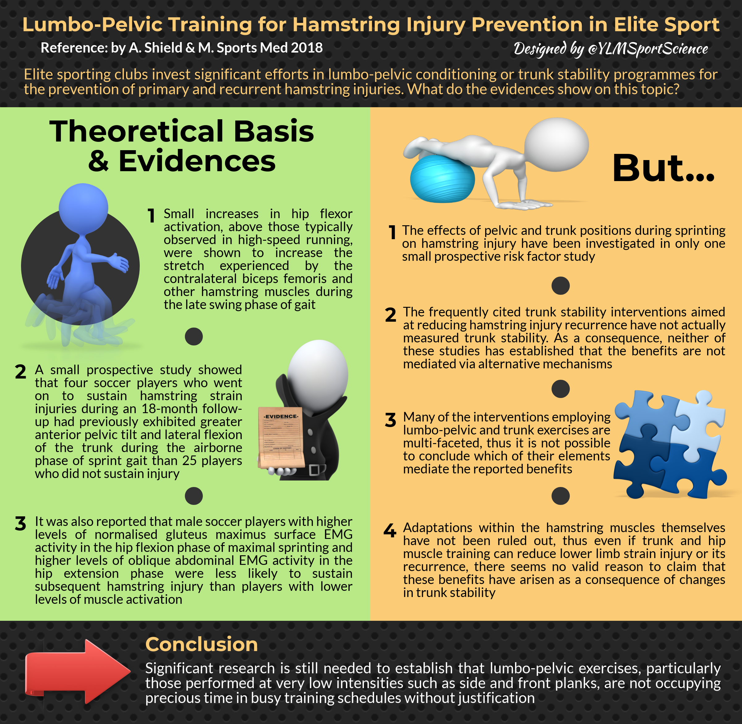 #632.Lumbo-pelvic training