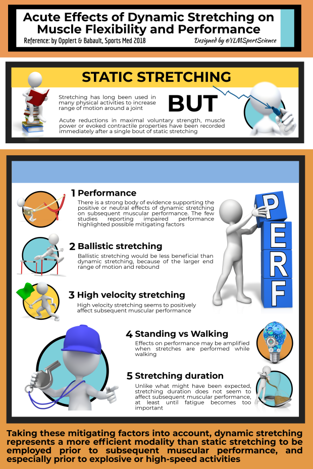 #653.Dynamic Stretching.png